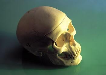 Crime skull