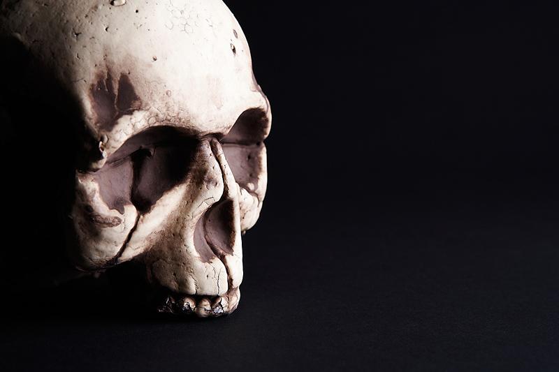 DeathSkull2