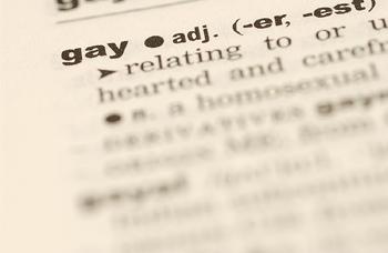 Gay dictionary