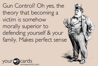 Gun Control eia