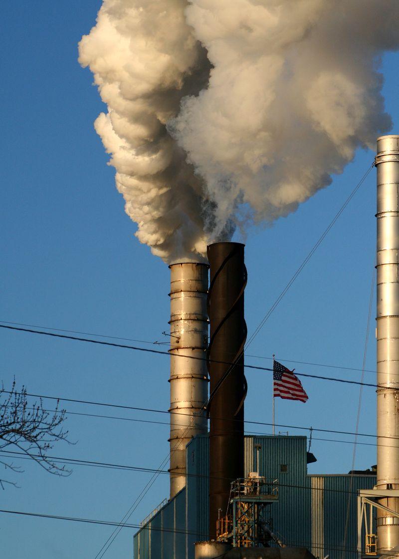 PollutionFree
